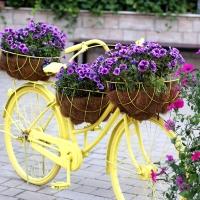 vedi offerta Arredamento da giardino e accessori